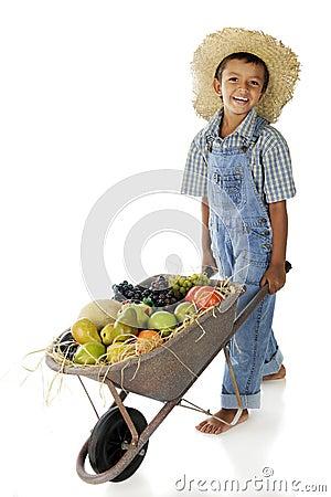 Fruit Farm Boy