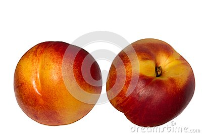 Fruit  hybrid  peach  apricot  nectarine