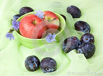 Fruit still life with chicory, apples, plums