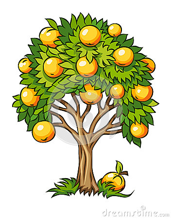Fruit tree isolated