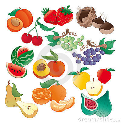 Fruit - vectorillustratie