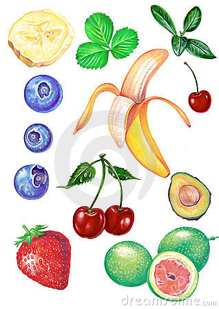 Free Fruits Stock Images - 4961544