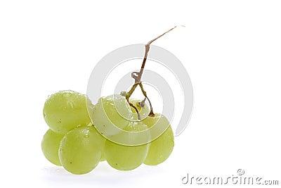 Fruits, Grape