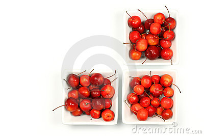 Fruits of the Malus Pumila (crab apple)