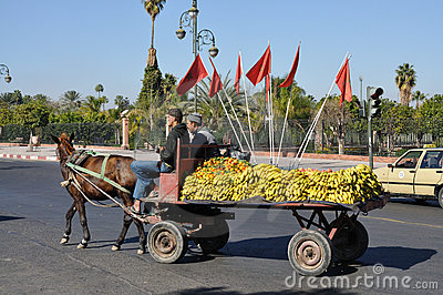 Fruits transport in Marrakesh Editorial Stock Photo