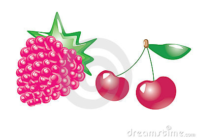 Fruits. vector