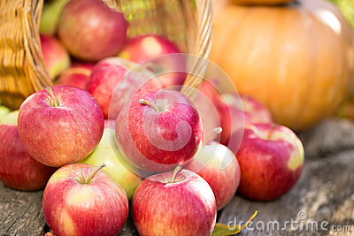 Fruits and vegetables in autumn