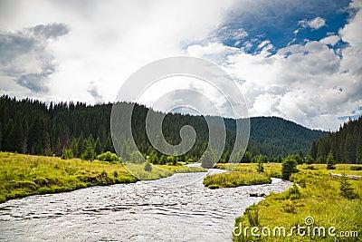 Frumoasa River