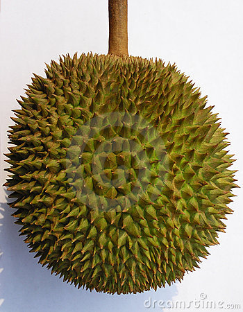 Fruta del Durian