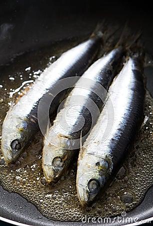 Frying sardine