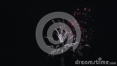 Fuegos artificiales coloreados multi de estallido en cielo nocturno Explote iluminaciones glowing celebración metrajes