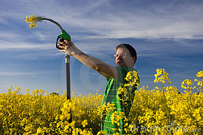 Fuel flowers