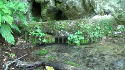 Fuente de agua potable de una cueva en verano almacen de metraje de vídeo