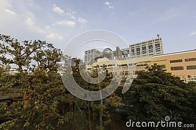 Fuji building and Aqua city entertainment centre