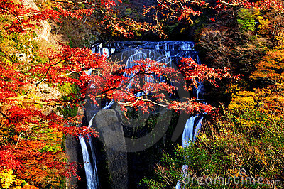 Fukuroda Waterfall during Autumn