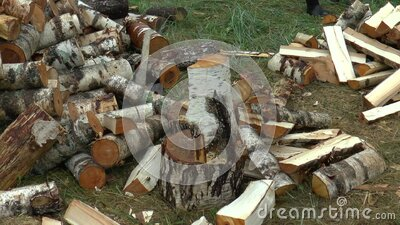 Full HD footage of a man choping firewood with axe stock video