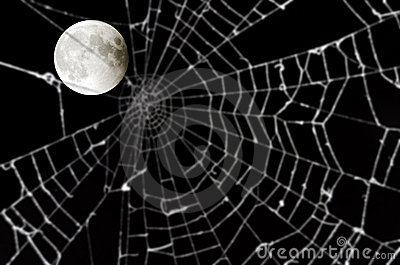 Full moon and blurred spider web