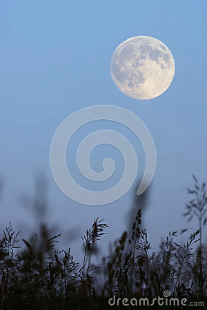 Full moon in the evening sky