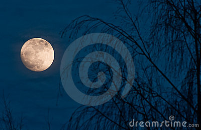 Full moon night scene
