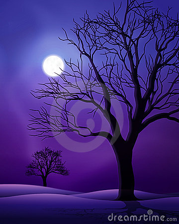 Free Full Moon Night Scene Stock Photo - 23004020