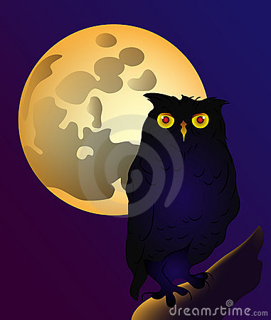 Full moon and owl