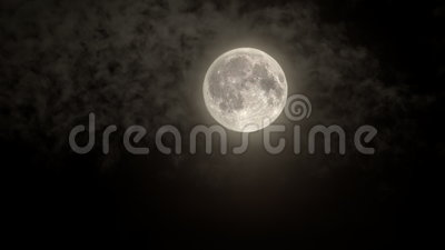 Full moonlight with light cloud cover stock video