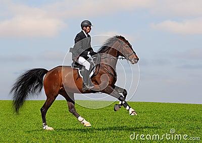 Full speed gallop
