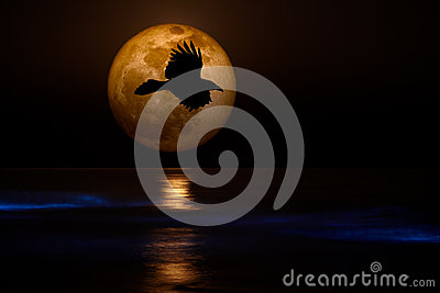 Full Supermoon, Black Flying Raven Ocean Waves