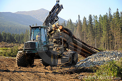 Full-tree harvesting