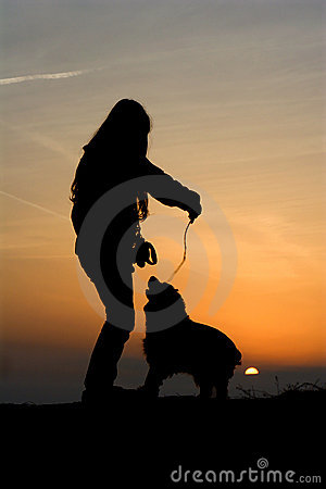 Fun of children and dog in sunset