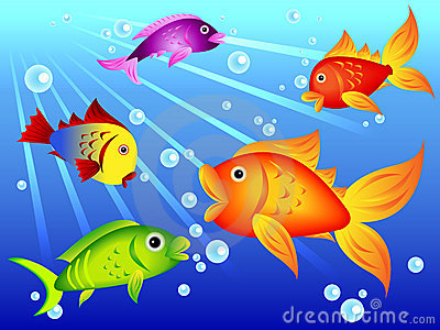 Fun colorful fish