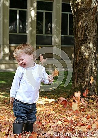 Fun fall leaves