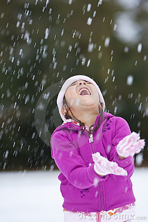 Free Fun In The Snow Stock Photography - 8096442