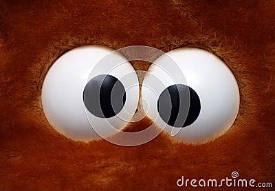 Fun toy eyeballs
