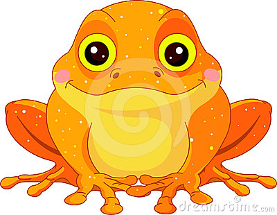 Fun zoo. Golden Toad