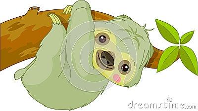 Fun zoo. Sloth