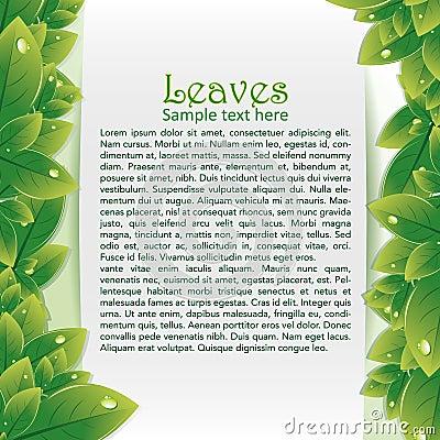 Fundo abstrato com folha verde