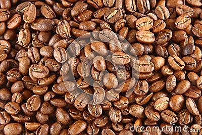 Fundo dos feijões de café