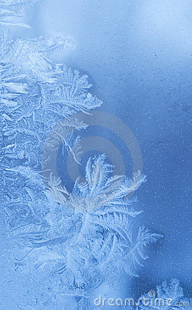 Fundo feérico do inverno