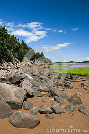 Fundy Shoreline