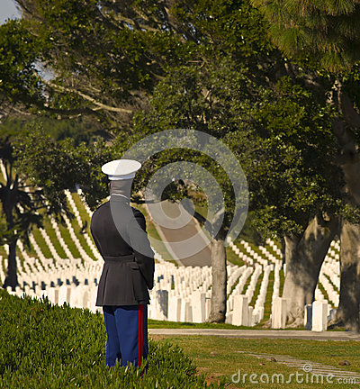 Marine in National Military Cemetery Editorial Photography