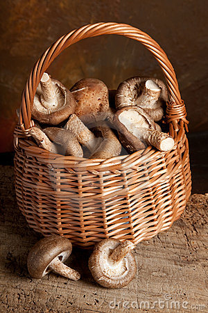 Fungi in a basket