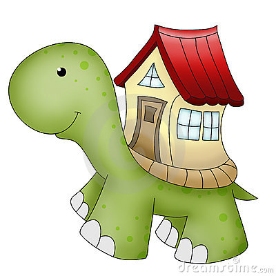 Funny animals turtle and house