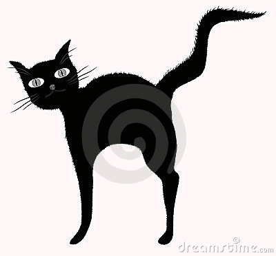 Funny big-eyed black cat with raised downy tail