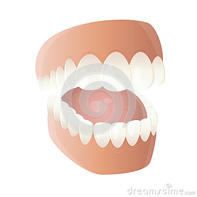 Funny cartoon denture