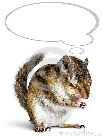 Free Funny Chipmunk Dreaming With Thought Bubble Royalty Free Stock Images - 26492409