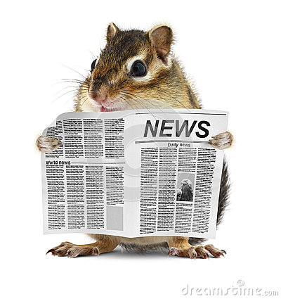 Free Funny Chipmunk Read Newspaper Stock Photos - 29370243
