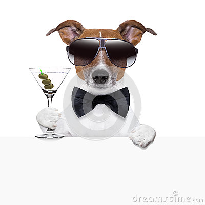 Free Funny Cocktail Dog Banner Royalty Free Stock Photos - 29959188
