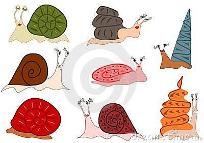 Funny cute snails
