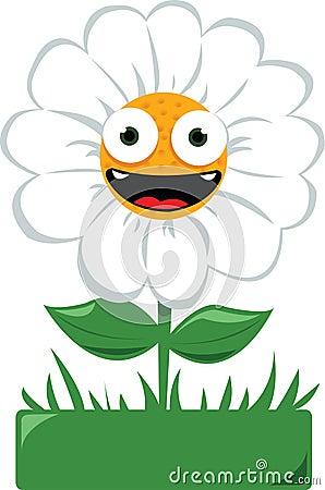 Funny daisy in a garden